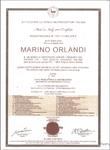 Женская сумка Marino Orlandi 4790